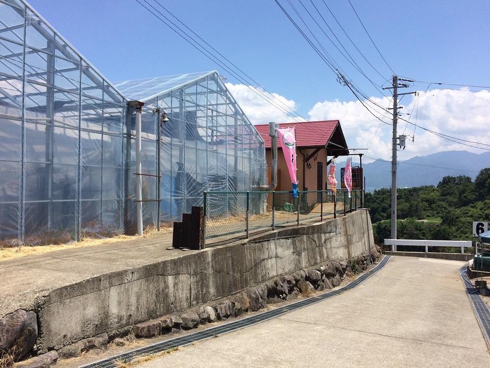 中島農園の受付小屋